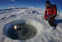 Antartide, l'ultima frontiera delle immersioni